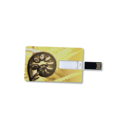 bpw credit flash drive